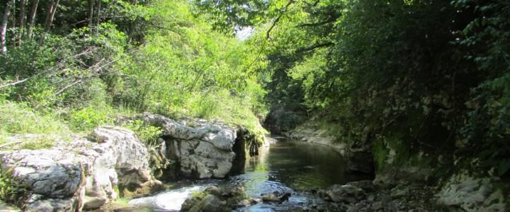 Лежерен уикенд в любимите Родопи – пещера Голубовица, крепостта при с.Кошница, каньона Горло и отдаване на почит на героите от Родопската шипка